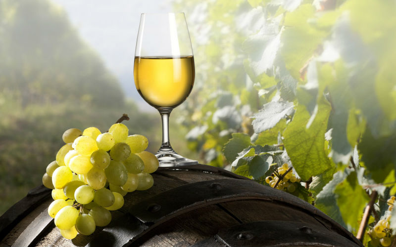 Image result for warm weather wines