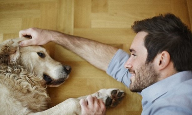Lessons from Your Pooch