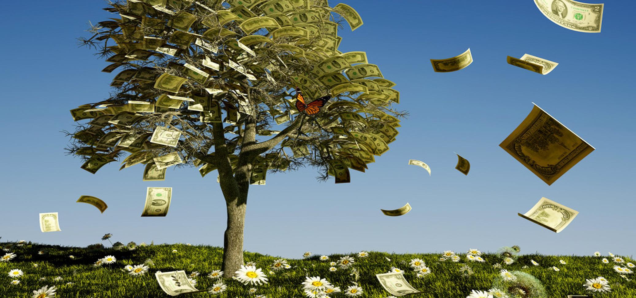 Money Does Grow On Trees Eligible Magazine